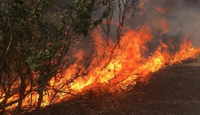 APEL al pompierilor ISU Prahova! Incendiile de vegetatie uscata au devenit un real pericol!