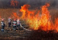 Situatia a scapat de sub control! ISU Prahova, apel catre populatie: STOP arderilor necontrolate pentru igienizarea terenurilor!