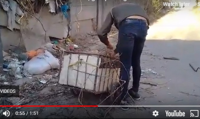 In atentia Politiei Locale si SGU! Imagini socante: o femeie e luata la bataie de un golan care arunca gunoiul in cimitirul Bolovani