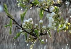PROGNOZA METEO săptămânală. Vreme mohorâtă, va ploua toată săptămâna, iar temperaturile scad în toată ţara