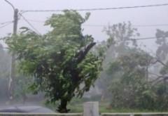 ALERTĂ de la meteorologi: Cod portocaliu de vânt puternic în trei județe
