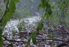 De ce se schimbă vremea în România atât de brusc. Explicațiile unui climatolog pentru fenomenele extreme