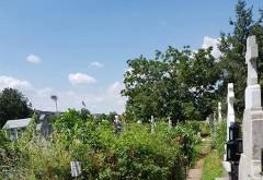 Cimitirul Bolovani a ajuns o jungla. Nepasarea rudelor celor morti, dar si a autoritatilor, intr-o galerie foto cat se poate de trista