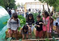 Școala din Ploiești unde elevii au grădină de legume și plante aromatice, seră și clasă în aer liber