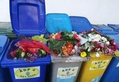 Unde ajung florile primite de profesori in prima zi de scoala