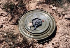 Mina antitanc din Al Doilea Razboi Mondial, descoperita de un prahovean in curtea casei