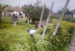Bărbat găsit mort într-o vie din orașul Urlați