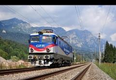 Sinucidere in gara Campina. O femeie de 34 de ani s-a aruncat in fata trenului