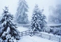 Ninge ca-n poveşti în România. Au început să se arate primele semne ale iernii VIDEO