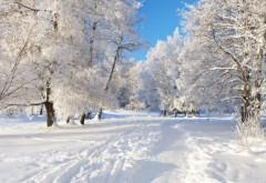 ANM a anunţat când vor fi primele ninsori în România! Urmeaza o iarnă grea, cu zăpadă din abundenţă
