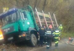 Accident cumplit vineri dimineață, pe DN 71. Un camion cu lemne s-a răsturnat peste o femeie