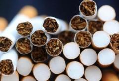 """""""Fabrică"""" de țigări clandestină descoperită la Bucov"""