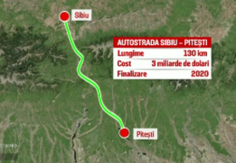 S-a găsit soluția: Cum vor fi mutați gândacii care pun în pericol realizarea autostrăzii Piteşti-Sibiu