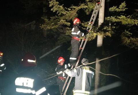 Peste 2200 de prahoveni au ramas fara curent din cauza vantului care a rupt stalpii de telegraf si a smuls copacii din radacini
