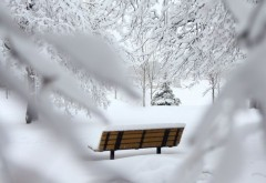 Prognoza meteo: Trei zile de frig și ninsori