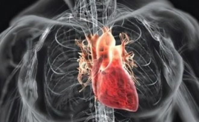 Coronavirusul nu atacă doar plămânii - Poate provoca complicații cardiovasculare periculoase, spun medicii de urgență