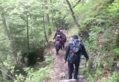 Turiste recuperate de jandarmi, din Bucegi, după ce s-au întâlnit cu un urs