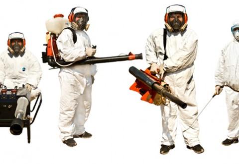 Serviciile de dezinfecție, dezinsecție și deratizare, incluse în oferta Rosal