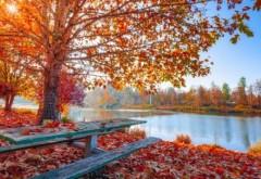 PROGNOZA METEO pentru octombrie. Vreme caldă, dar şi ploi în multe zone din ţară