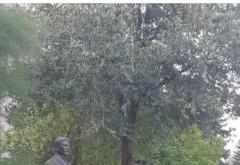 Sa nu ne uitam istoria! SMV Ploiesti inaugureaza, la Rezina (R. Moldova) bustul lui Constantin Stere