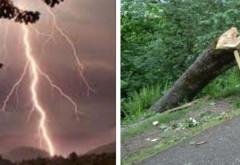 Peste o mie de gospodarii au ramas fara curent, dupa furtuna din Prahova