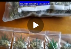 """Prahova/ Retea de traficanti de droguri, saltati de DIICOT. S-au gasit la perchezitii toate """"sortimentele"""" de droguri posibile"""