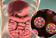 Focar de infecţie cu norovirus, la doi paşi de Prahova. 140 de persoane au avut nevoie de îngrijiri medicale