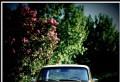 Un ploiestean a mers cu Dacia 1300 in Grecia. Tanarul a povestit cum a fost drumul si care a fost singurul inconvenient