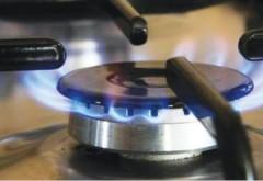 ANRE şi ANPC vor demara controale la anumiţi furnizori de gaze naturale