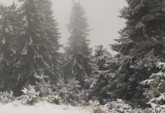A nins la munte! Temperaturile au scazut pana la -3 grade