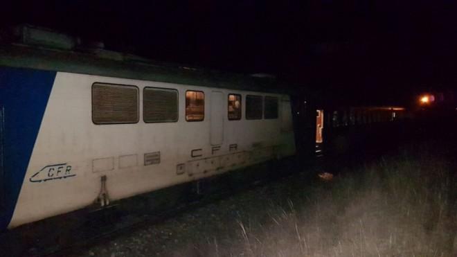 Masacru pe calea ferata! Un cioban si 18 oi si capre au murit calcati de tren, intre Ploiesti Vest si Buda