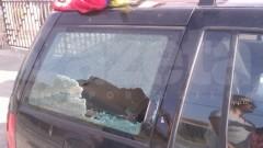 Violenţe pe Valea Prahovei! Ungurii au atacat cu pietre maşinile românilor VIDEO