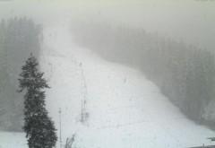 Ninge pe Valea Prahovei!