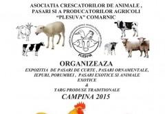 Targ de produse traditionale si Expozitie de pasari si animale exotice, la Campina. Vezi AICI programul evenimentului