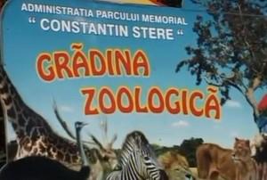 Crăciunul animalelor la Grădina Zoologică din Bucov