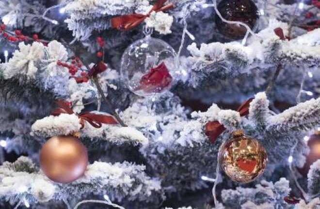 De Crăciun vor fi temperaturi de PRIMĂVARĂ. Ce anunţ au făcut meteorologii pentru REVELION
