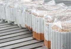 Angajati ai fabricii British American Tobacco din Ploiesti, cercetati pentru furt si evaziune fiscala