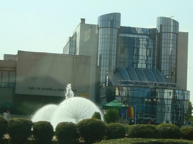 O delegaţie din China vine în vizită de lucru în Prahova