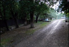 Femei RĂTĂCITĂ în pădurea Cazacu din Vărbilău