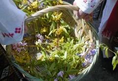 FLORII 2015: Tradiţii, obiceiuri şi superstiţii de Florii