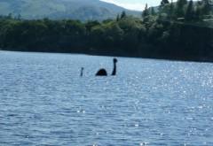 Monstrul din Loch Ness are un frate în Prahova. Povestea dihaniei din Lacul Paltinu, şarpele enorm cu cap de câine care i-a înspăimântat pe localnici
