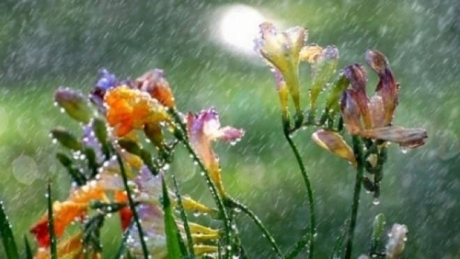 ALERTĂ METEO: Vin două zile cu ploi puternice, vânt şi grindină