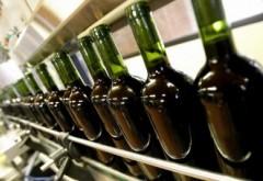 PERCHEZIŢII în Prahova într-un dosar de evaziune fiscală cu vinuri contrafăcute