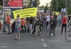 Aproximativ 100 de ploieșteni au protestat împotriva tăierilor ilegale de copaci