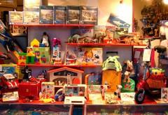 Amenzi usturătoare pentru comercianții de jucării din Prahova