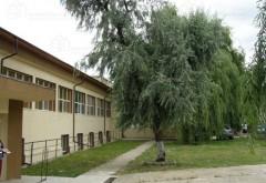 Compania CSPER Prahova SA ofera spre inchiriere cladire de birouri, in centrul Plopeniului