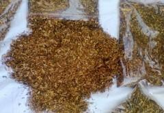 PERCHEZIŢII în Prahova la contrabandişti cu TUTUN. Peste două tone de tutun, confiscate
