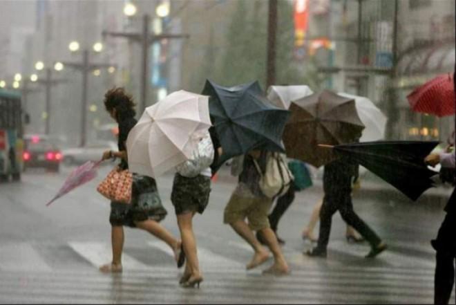 COD GALEBN de ploi și vijelii în Prahova