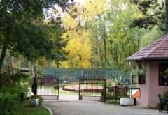 Petrece HALLOWEEN-ul la Grădina Zoologică din Bucov