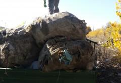 Poliţiştii locali din Ploieşti au confiscat 500 de kg de GUNOI